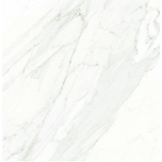 Biancogres Porcelanato 82x82 Extra Calacata Satin Ac. Ret. [m²]